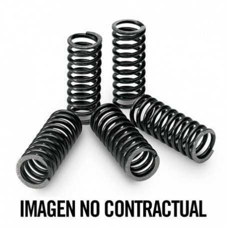 (204071) Kit Muelles Embrague Tecnium HONDA CRF R 250 Año 10-10