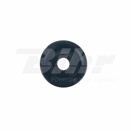 (479047) Polea plástico para acelerador trial Domino 0637.02.743